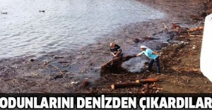 Odunlarını denizden çıkardılar