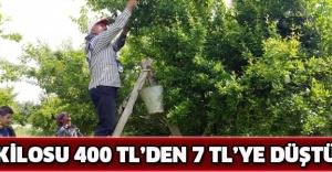 Kilosu 400 TL'den 7 TL'ye düştü