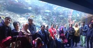 Esenyurt Belediyesi'nden Engelli Çocuklara Kültür Gezisi